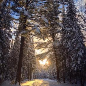 The Great Outdoors – jana_b_ananas' tips for your Ontario winter adventure