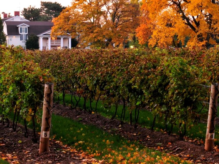 VineyardVacation_RiverbendInn