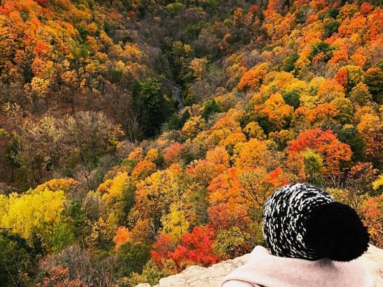 Fall Colours at Dundas Peak
