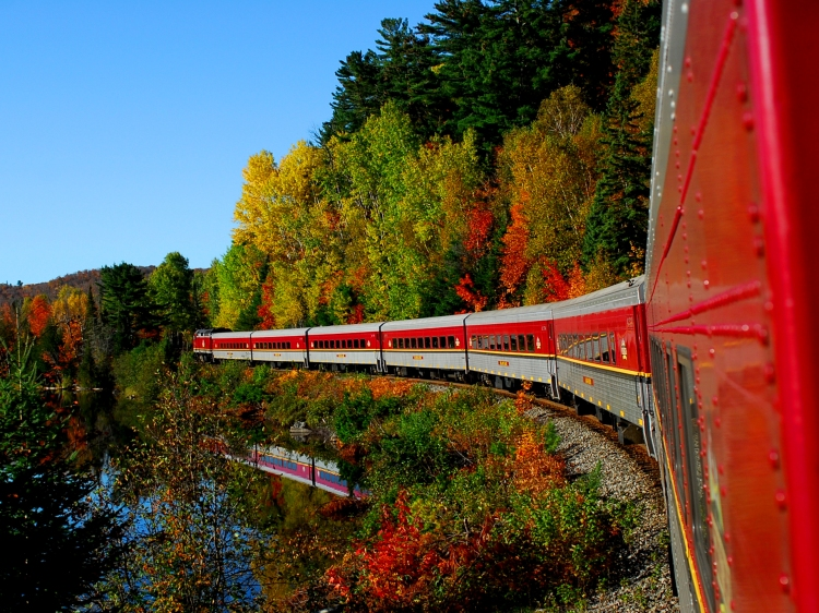 Side view of the Agawa Canyon Tour Train in fall