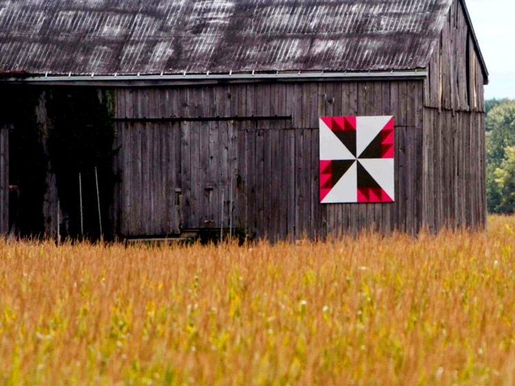 Barn quilt design named Rosebud in Chatham-Kent