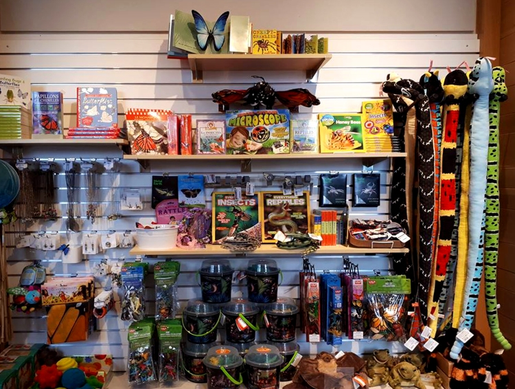 Wall of nature-inspired puzzles, gifts and books.