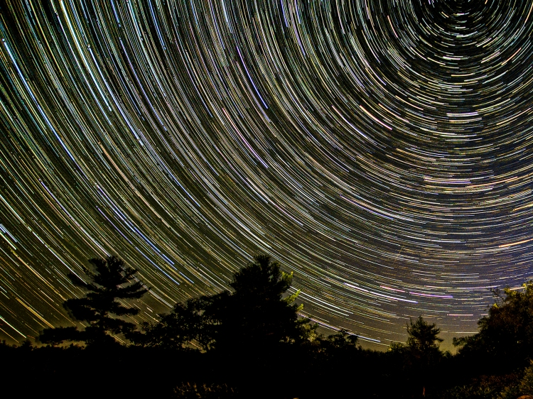 Artistic photo of stars above a forest at night.
