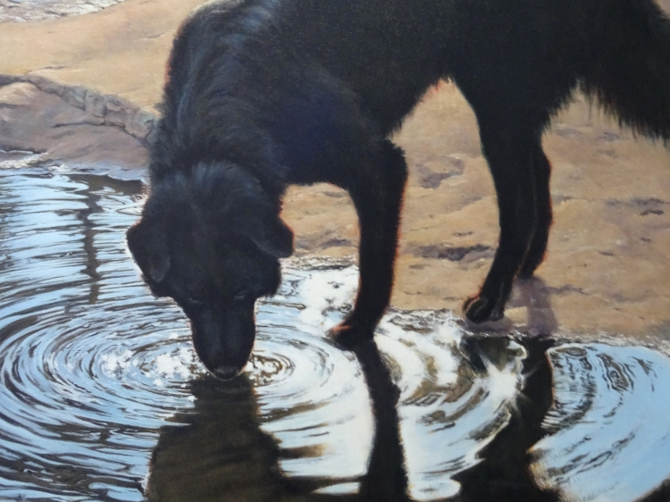 Portrait of Brownie at ArtBank Collective, by artist Don Kilby